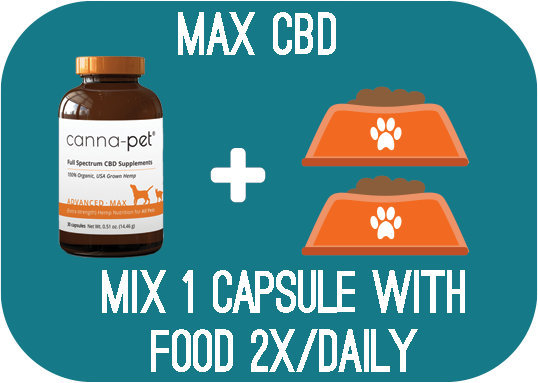 Capsules: Canna-Pet® Advanced MaxCBD – 30 capsules - Mix 1 capsule with food 2x daily