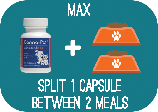 Capsules: Canna-Pet® Advanced MaxCBD – 10 capsules – FREE for DONATION - Split 1 capsule between 2 meals