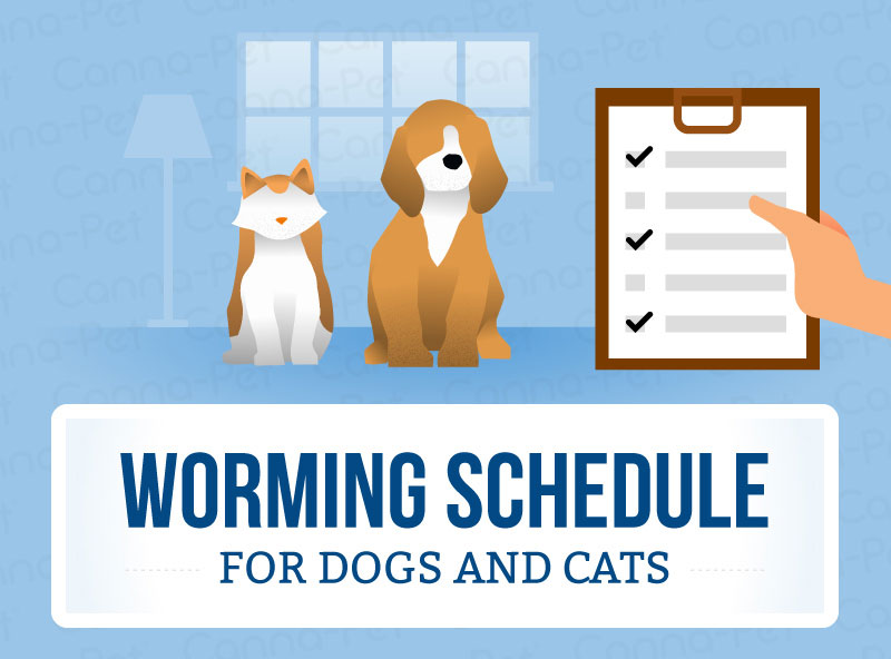 Worming Schedules for Dogs and Cats | Canna-Pet