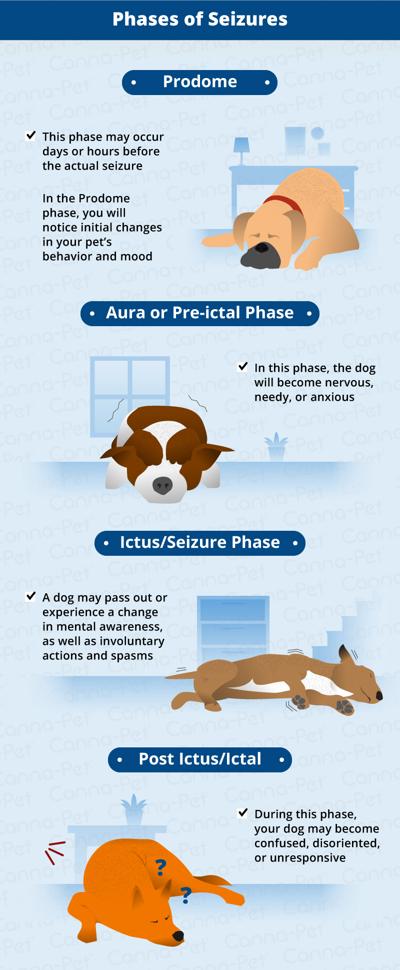 Types of Seizures in Dogs | Canna-Pet