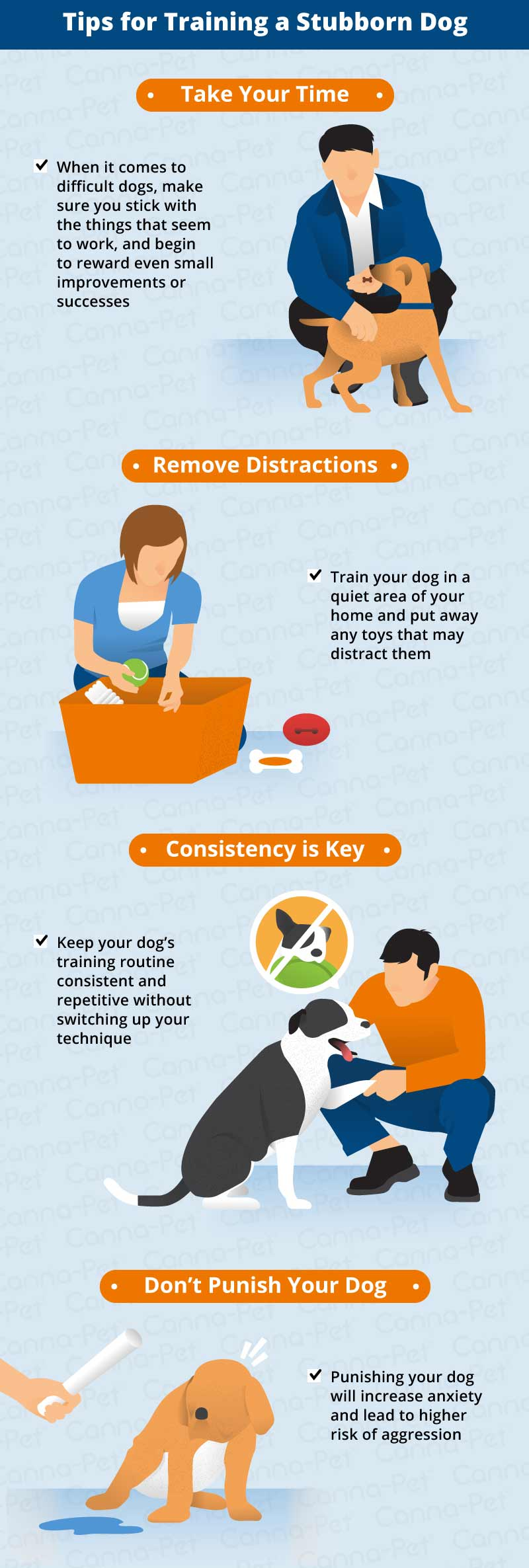 tips for training a stubborn dog