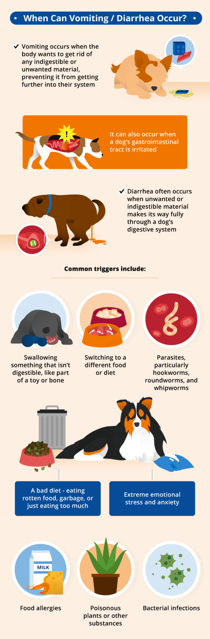 Vomiting and Diarrhea in Dogs | Canna-Pet