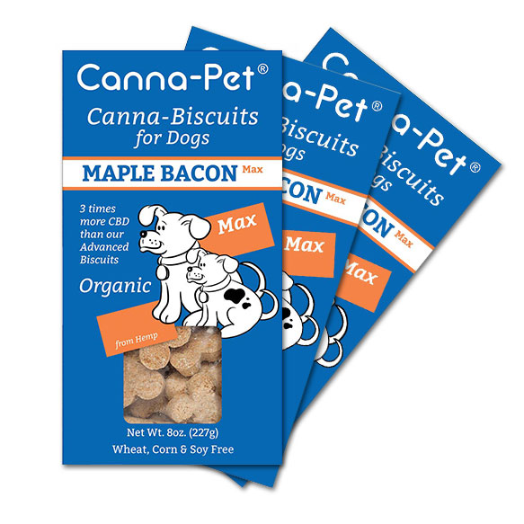 Maxcbd canna pet dog biscuits maple bacon 3 pack